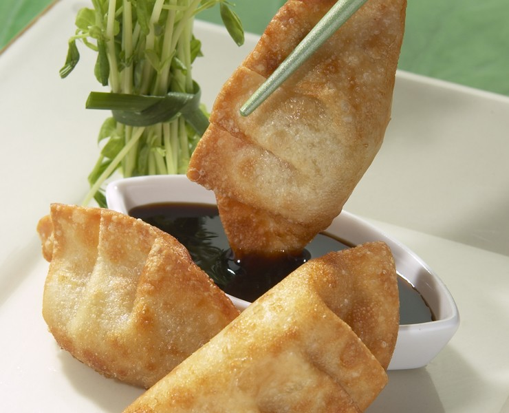 Vegetable Potsticker